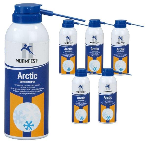 Kältespray Vereisungsspray Arctic Eisspray Vereiser Spray -45° 200ml